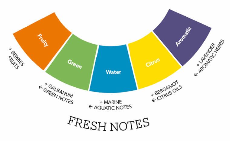 fresh scent perfumes